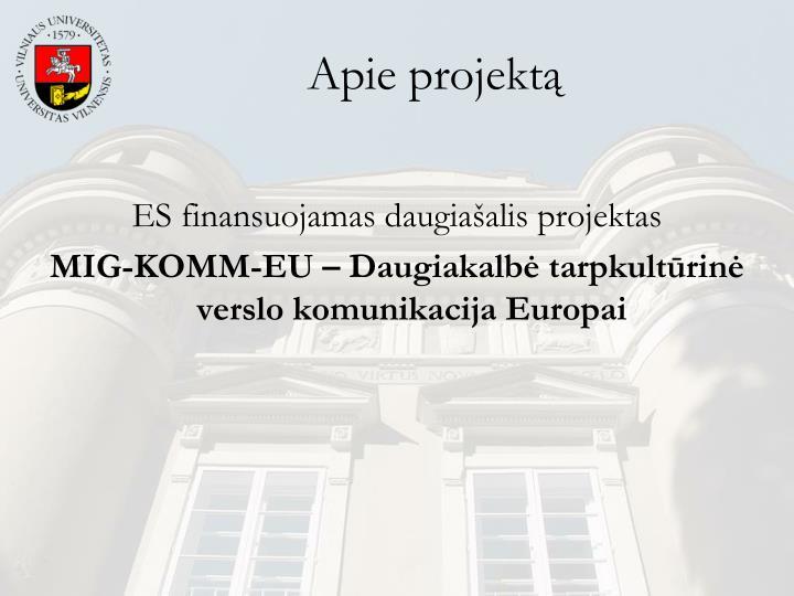 Apie projektą