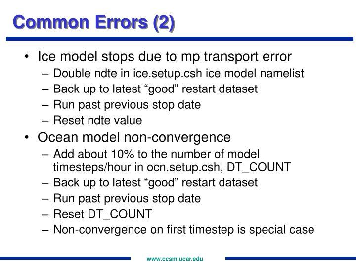 Common Errors (2)