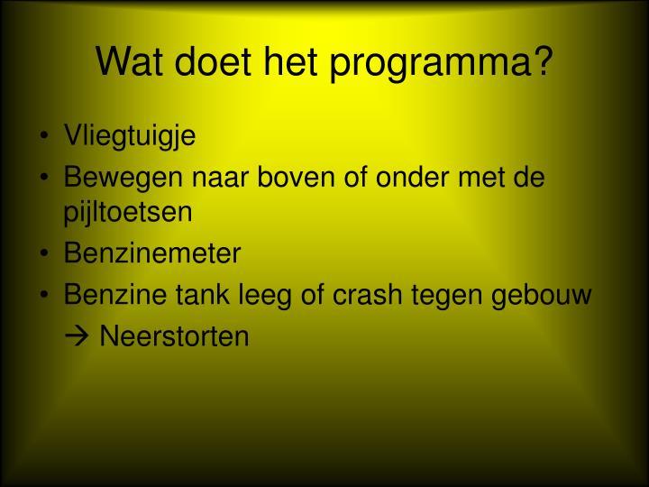 Wat doet het programma?