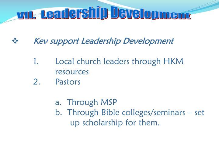VII.  Leadership Development