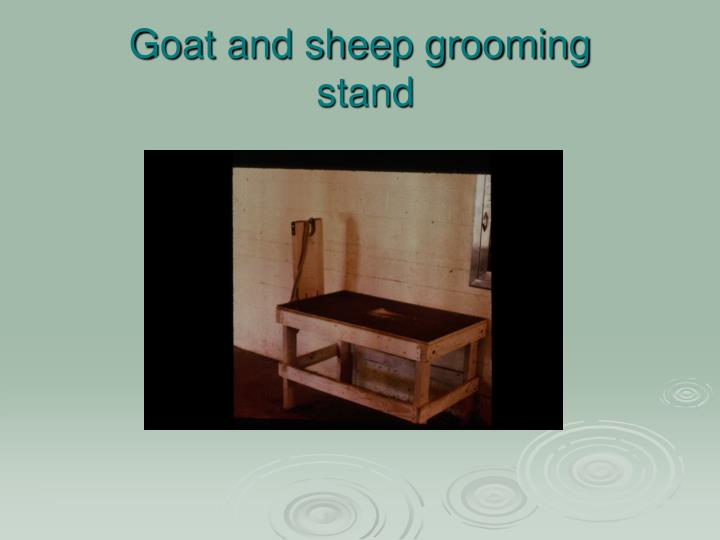Goat and sheep grooming