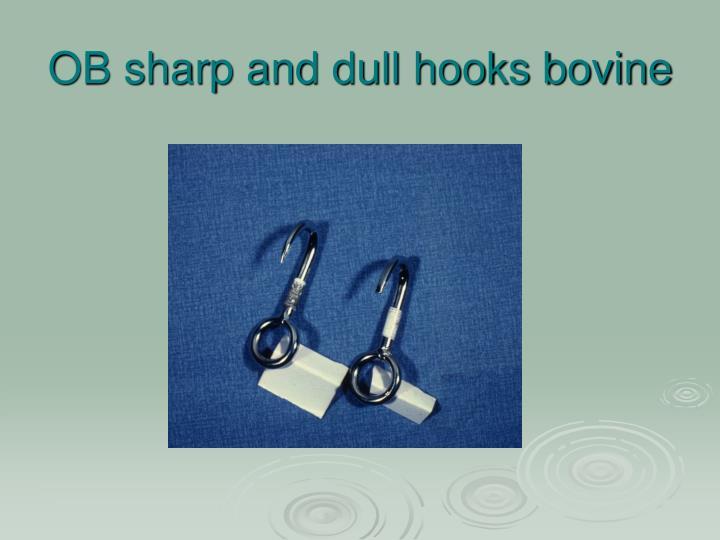 OB sharp and dull hooks bovine