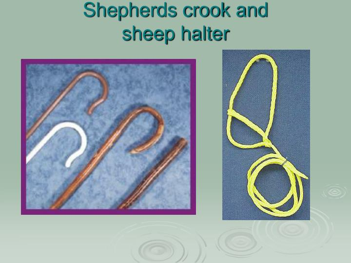 Shepherds crook and
