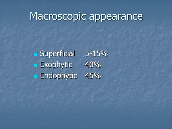 Macroscopic appearance