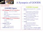a synopsis of goods