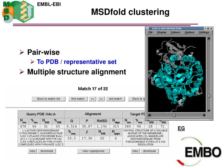 MSDfold clustering