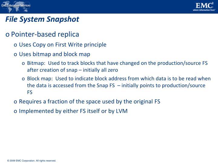 File System Snapshot