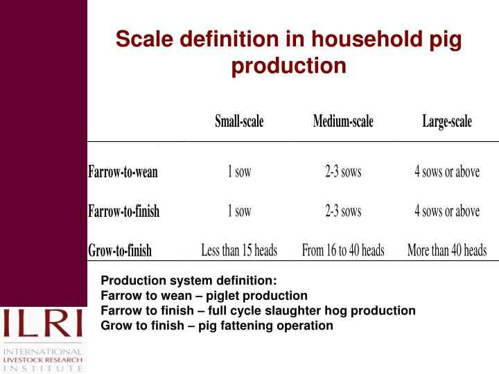 Scale definition in household pig production