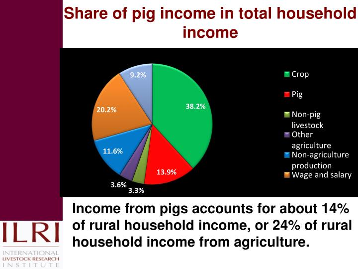 Share of pig income in total household income