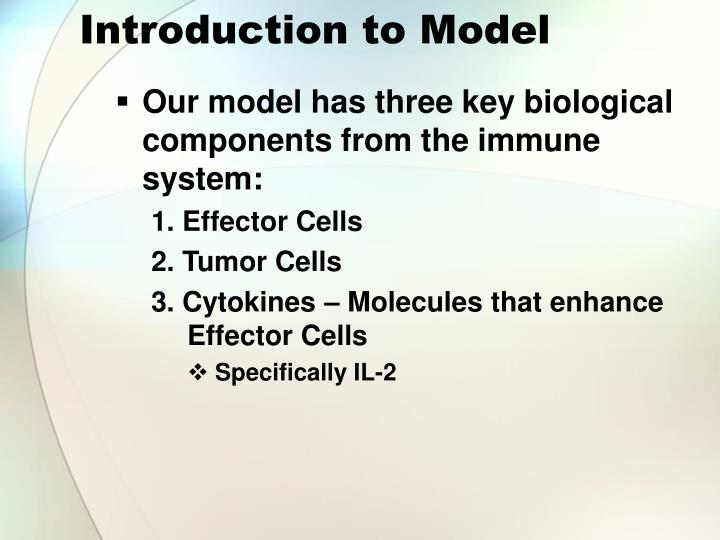 Introduction to Model