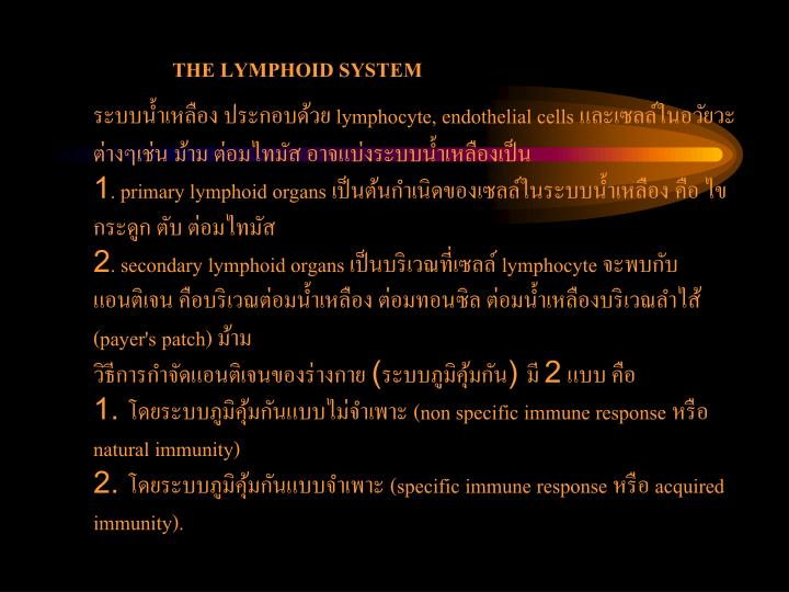 THE LYMPHOID SYSTEM