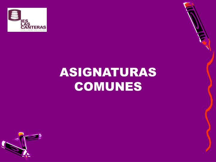 ASIGNATURAS COMUNES