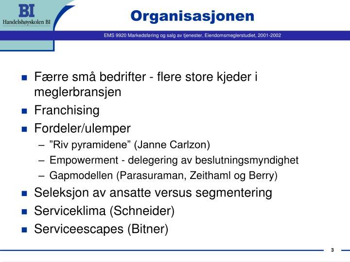 Organisasjonen