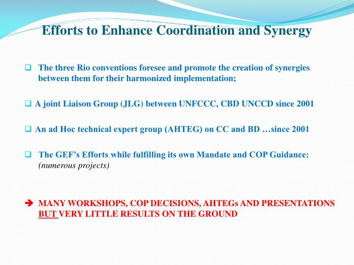 Efforts to Enhance Coordination and Synergy