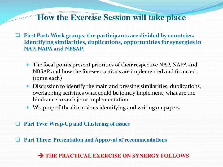 How the Exercise Session will take place