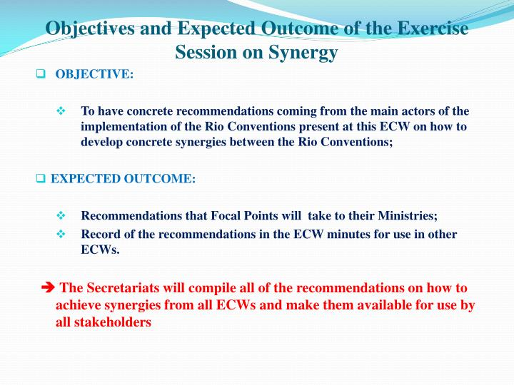 Objectives and Expected Outcome of the Exercise Session on Synergy