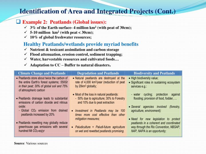 Identification of Area and Integrated Projects (Cont.)
