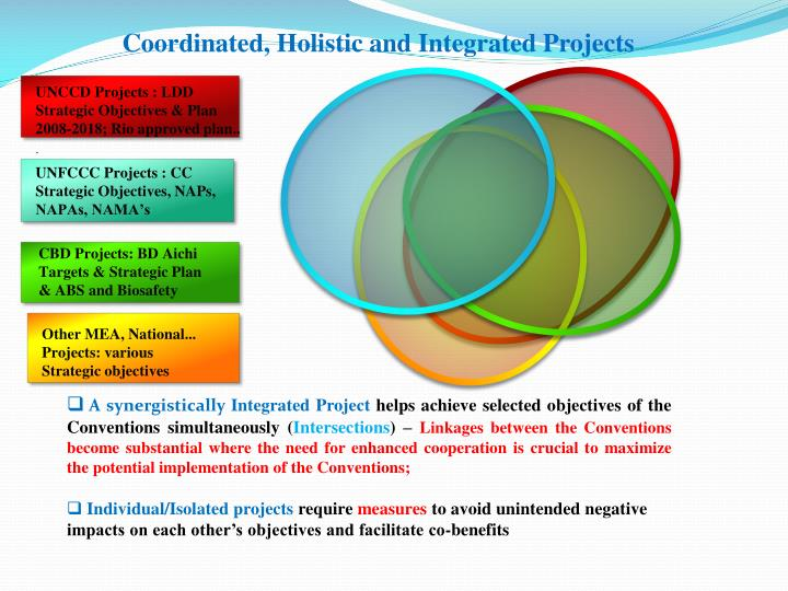 Coordinated, Holistic and Integrated Projects