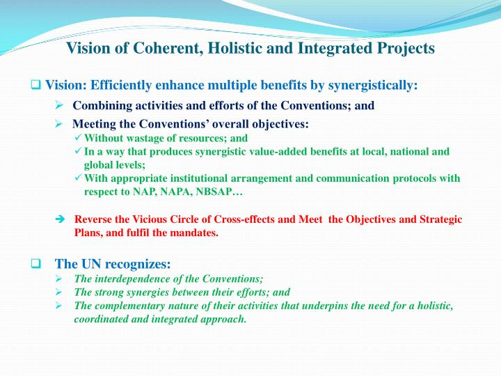 Vision of Coherent, Holistic and Integrated Projects