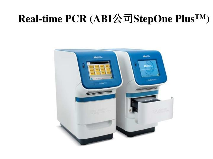 Real-time PCR (ABI