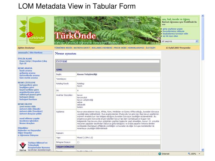 LOM Metadata View in Tabular Form