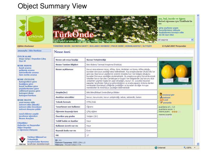 Object Summary View