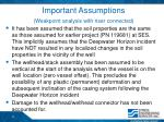 important assumptions weakpoint analysis with riser connected