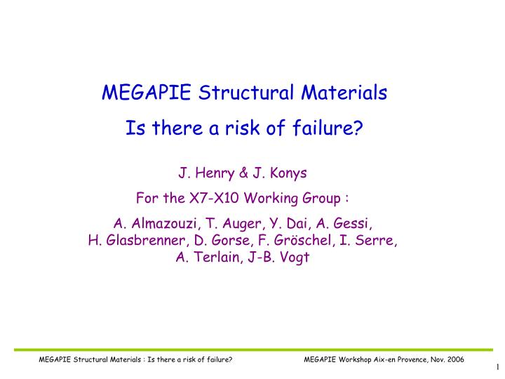 MEGAPIE Structural Materials