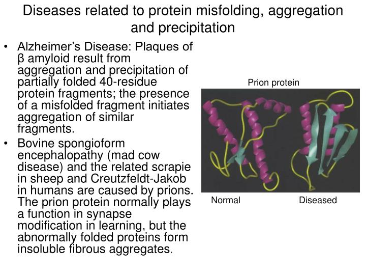 Diseases related to protein misfolding, aggregation and precipitation