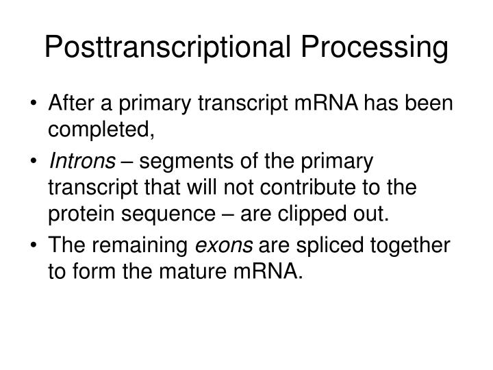 Posttranscriptional Processing