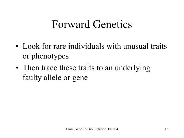 Forward Genetics