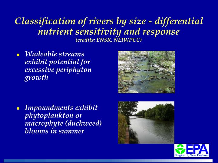 Classification of rivers by size - differential nutrient sensitivity and response