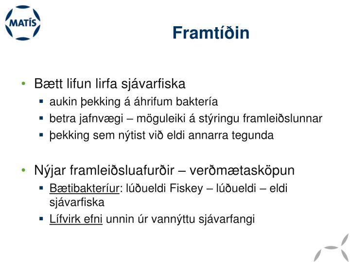 Framtíðin