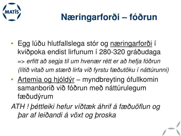 Næringarforði – fóðrun
