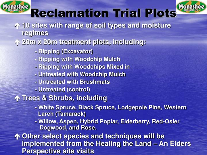 Reclamation Trial Plots
