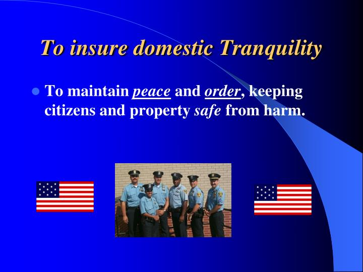 To insure domestic Tranquility