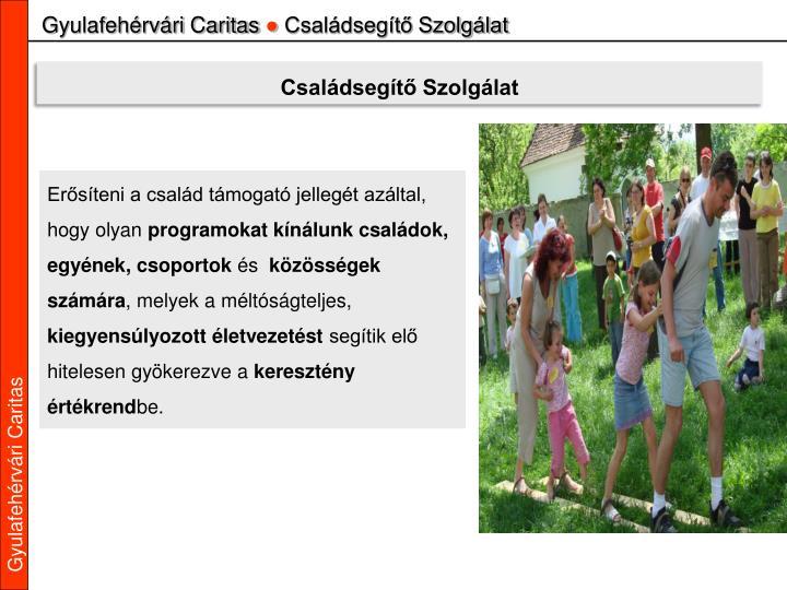 Gyulafehérvári Caritas