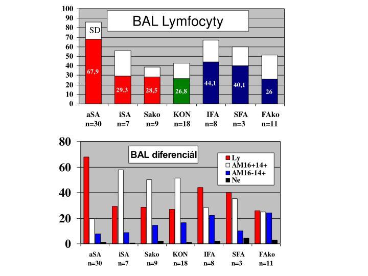 BAL Lymfocyty