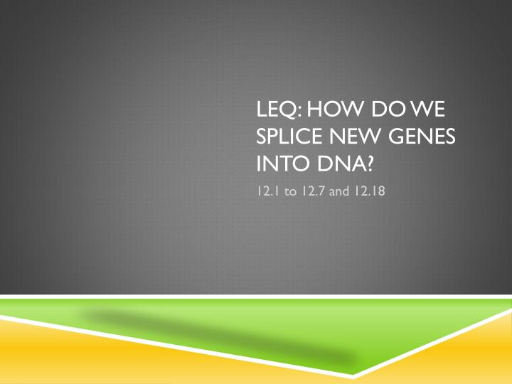 LEQ: How do we splice new genes into DNA?