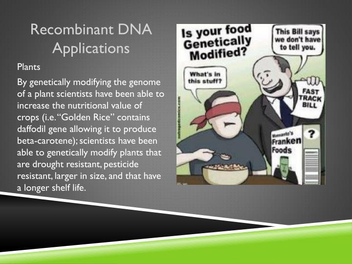 Recombinant DNA Applications