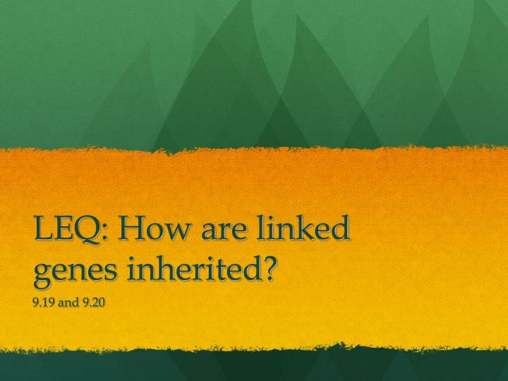 LEQ: How are linked genes inherited?
