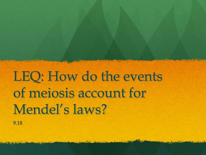 leq how do the events of meiosis account for mendel s laws