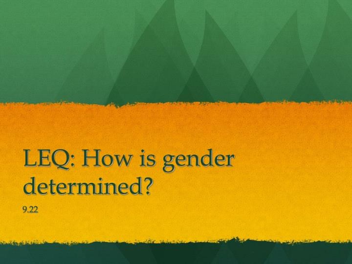 LEQ: How is gender determined?