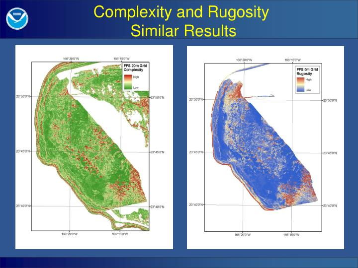 Complexity and Rugosity