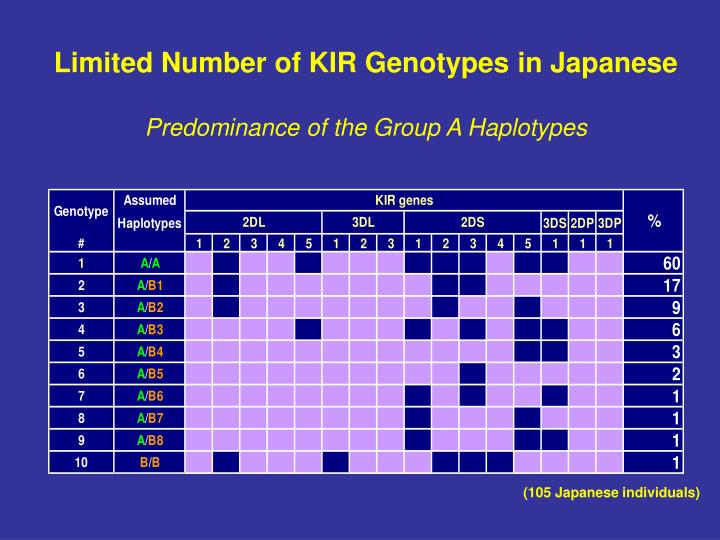 Limited Number of KIR Genotypes in Japanese