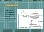 7 bioremediation
