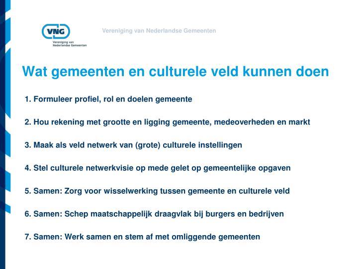 Wat gemeenten en culturele veld kunnen doen
