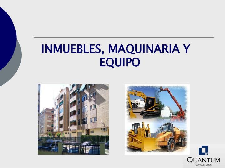 INMUEBLES, MAQUINARIA Y EQUIPO