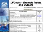lfgcost example inputs and outputs