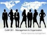 cstm 301 management organization